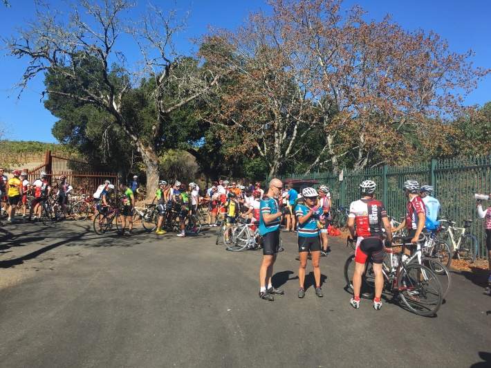 Cyclists hang out after reaching the summit of Montebello Road.